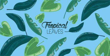 frame decoration blue background tropical leaves vector illustration Illustration