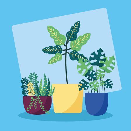 decorative plants in pots leaves interior background vector illustration Illusztráció