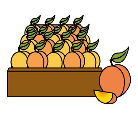 peach fresh tropical fruits in wooden box vector illustration Stock Illustratie