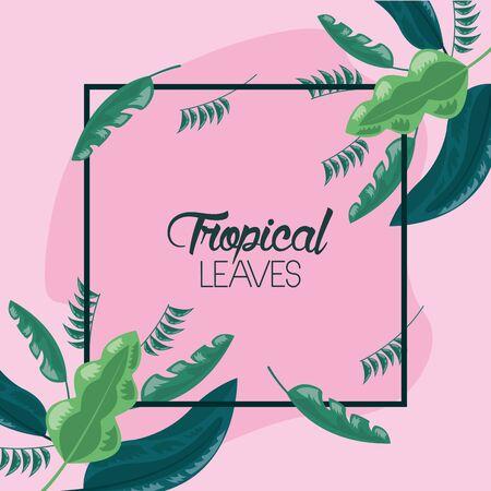 frame decoration pink background tropical leaves vector illustration Vektorové ilustrace