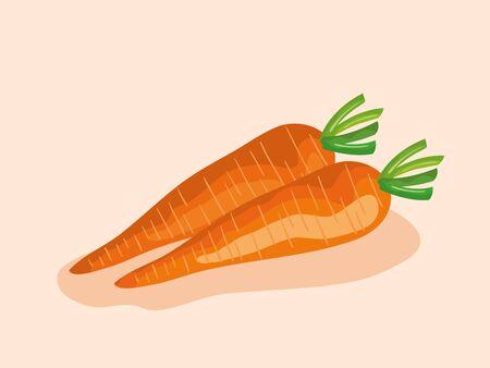 Carottes saines légumes frais nutrition sur fond rose, illustration vectorielle