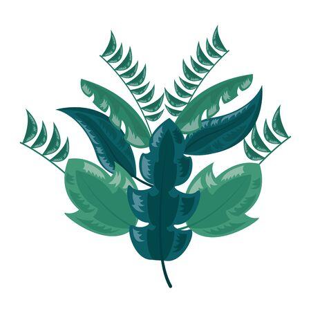 botanical leaf foliage arrangement on white background vector illustration