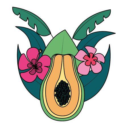 papaya flowers tropical fruits foliage exotic vector illustration Иллюстрация