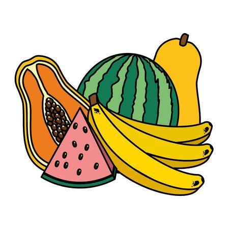 watermelon banana papaya tropical fruits vector illustration Illustration