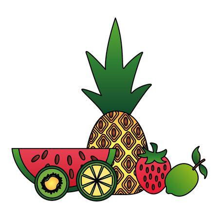 tropical exotic fruit pineapple watermelon starwberry lime kiwi vector illustration Çizim
