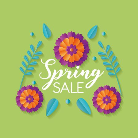 flowers spring sale background vector illustration design