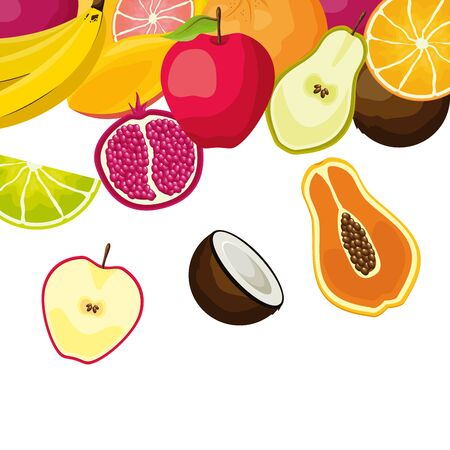 tropical fruits papaya coconut apple pear pomegranate orange vector illustration