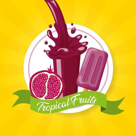 pomegranate juice ice cream splash tropical fruits vector illustration Çizim
