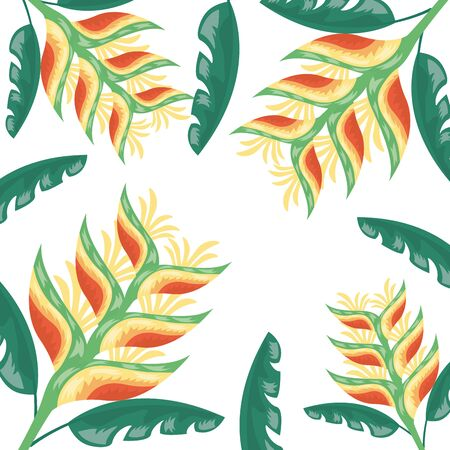 tropical flowers exotic foliage leaves decoration vector illustration