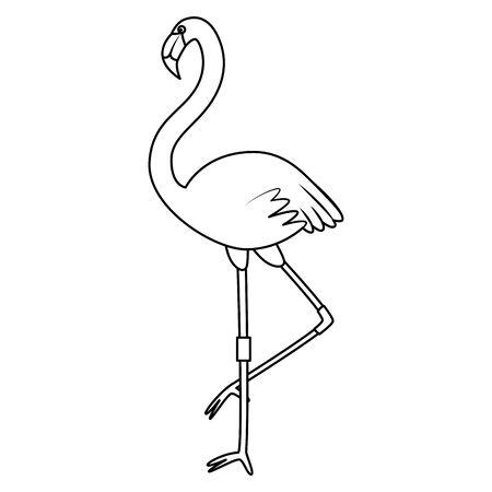 beautiful exotic flemish bird summer icon vector illustration design