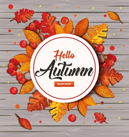 hello autumn in background wooden with frame and leafs vector illustration design