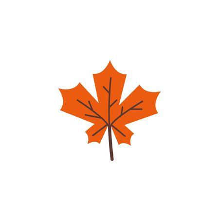 autumn leaf seasonal isolated icon vector illustration design