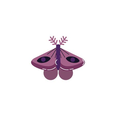 moth insect animal isolated icon vector illustration design  イラスト・ベクター素材