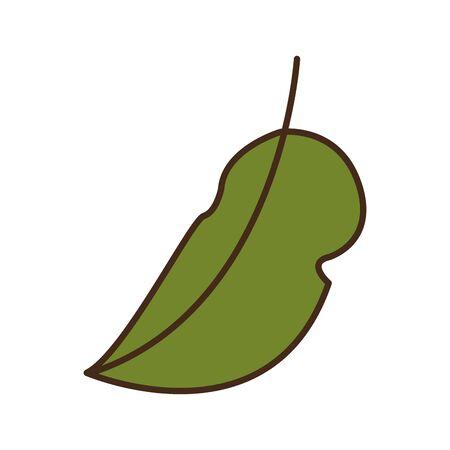 autumn leaf plant seasonal isolated icon vector illustration design  イラスト・ベクター素材
