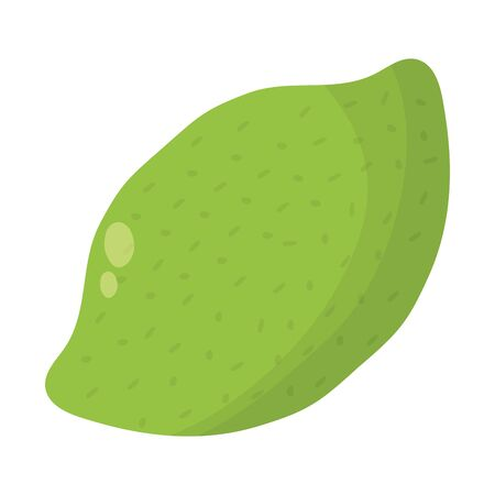 fresh lemon citrus fruit icon vector illustration design  イラスト・ベクター素材