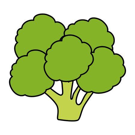fresh broccoli vegetable icon vector illustration design Stock Vector - 132919274