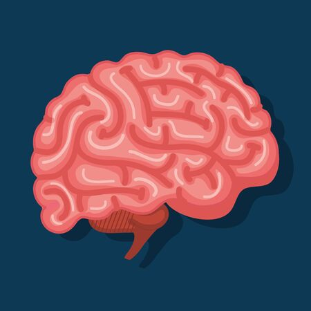 intelligence brain with memory and health creative vector illustration