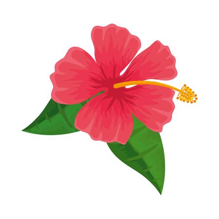 exotic tropical flower and leafs vector illustration design 일러스트