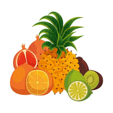 group of tropical and fresh fruits vector illustration design