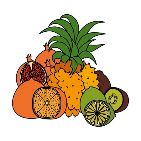 group of tropical and fresh fruits vector illustration design Standard-Bild - 133067675