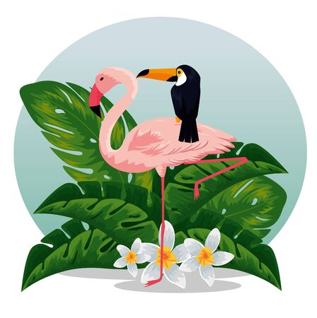 tropical flamish with toucan and flowers with leaves vector illustration