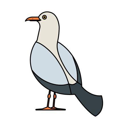 seagull marine animal icon vector illustration design