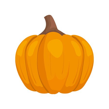 autumn pumpkin food isolated icon vector illustration design 일러스트