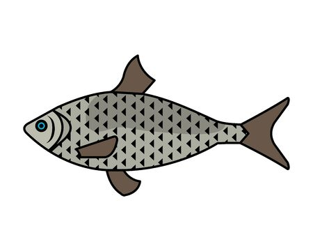 sea fish animal icon vector illustration design 스톡 콘텐츠 - 133269201
