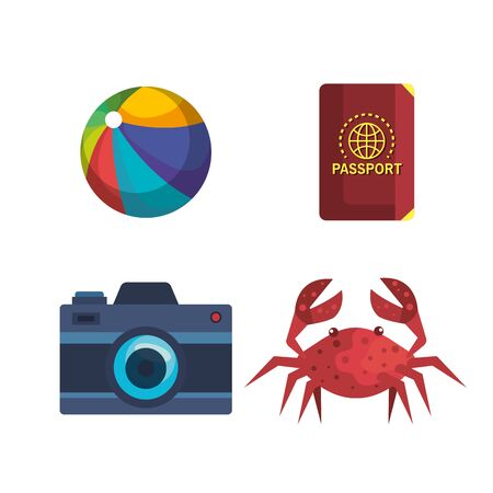 set of beach ball with passport and camera with crab over white background vector illustration
