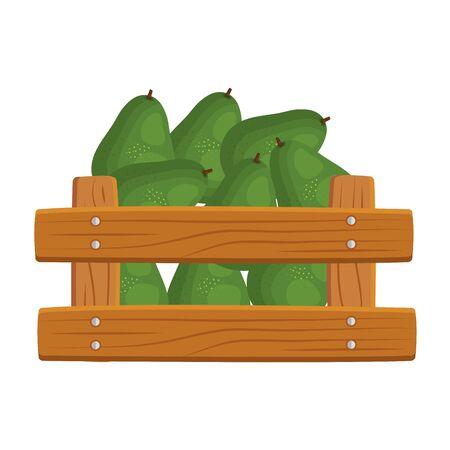 fresh avocados vegetables in wooden box vector illustration design