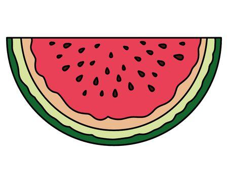 fresh watermelon tropical fruit portion vector illustration design 일러스트