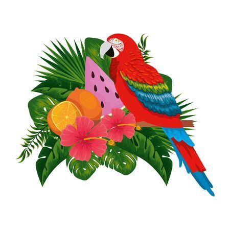 exotic parrot with tropical fruits and floral decoration vector illustration design Foto de archivo - 133701588