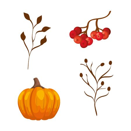 season autumn pumpkin with branches and fruits vector illustration design