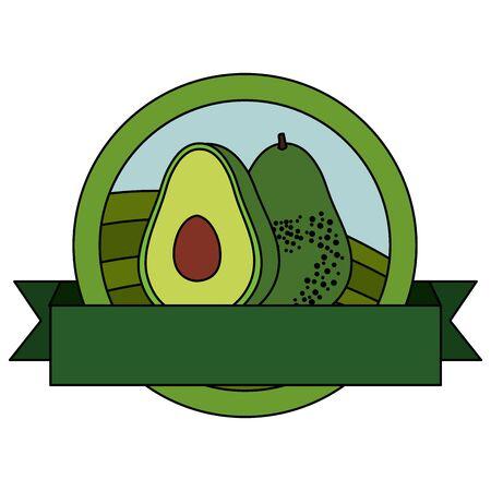 fresh avocado vegetable with ribbon seal stamp vector illustration design Banque d'images - 133835122
