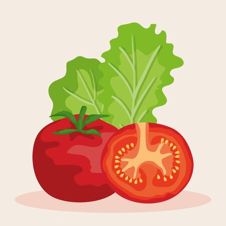 fresh tomato with lettuce vegetables nutrition to healthy food vector illustration