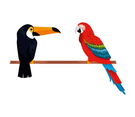 tropical and exotic parrot with toucan vector illustration design