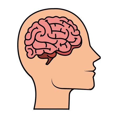 profile with brain human organ vector illustration design Ilustração