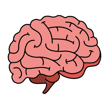 brain human organ icon vector illustration design Ilustrace