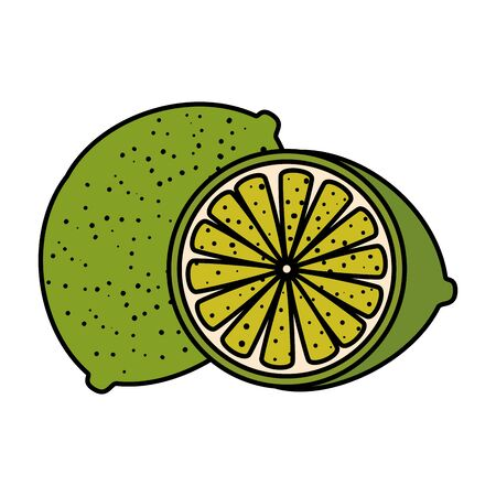 fruits graphic design vector illustration