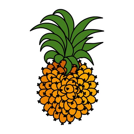 exotic pineapple fruit icon vector illustration design