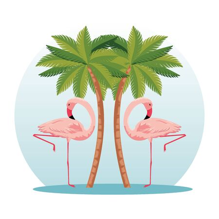 tropical flamingos with nature palms trees vector illustration