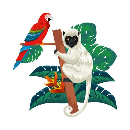 tropical capuchin monkey and parrot in leafs palms vector illustration design