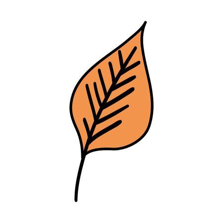 autumn dry leaf nature icon vector illustration design Çizim