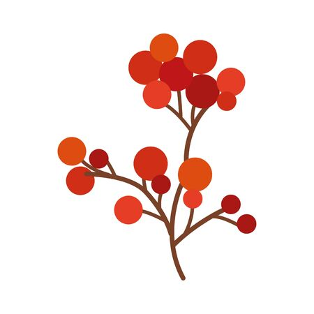 branch with cherries nature icon vector illustration design