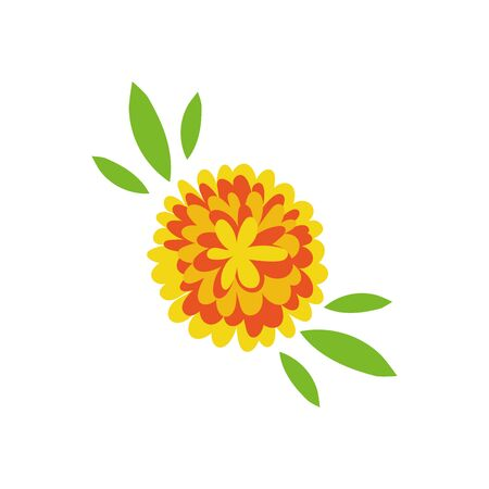 beautiful flowers and leafs garden decorative icon vector illustration design