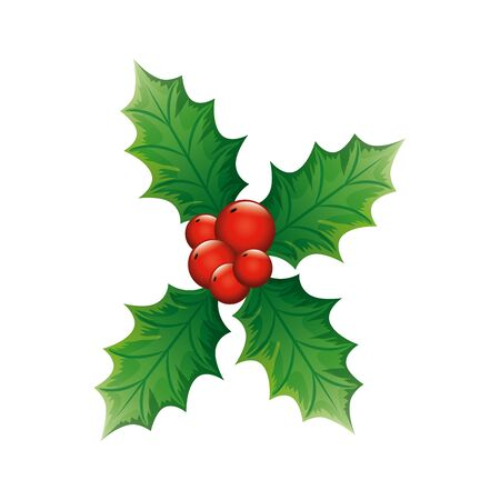 leafs with seeds decoration christmas isolated icon vector illustration design