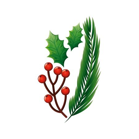 branches with holly fruits christmas and tropical leafs vector illustration design 스톡 콘텐츠 - 134050855