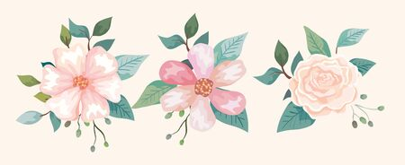 set of flowers with branches and leafs vector illustration design