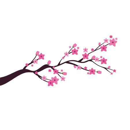chinese tree branch with flowers vector illustration design