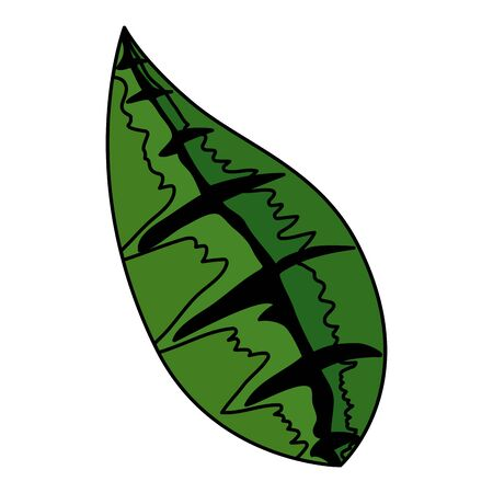 ecology leaf isolated icon vector illustration design
